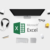 Microsoft Excel II (PDXLS2-0031)