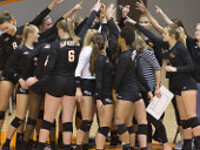 Bearkat Volleyball vs New Orleans