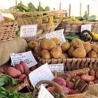 Farm & Garden Market Cart