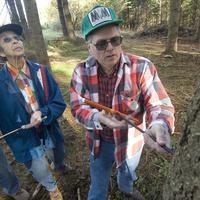 Master Woodland Manager Training - Lane County