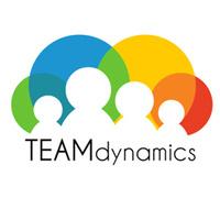 Team Dynamics (LSTD01-0048)