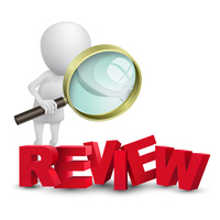 Rapid Review for Fellowship Essays