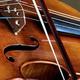 Viola Celebration