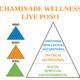 Student Health & Wellness Kick Off Event