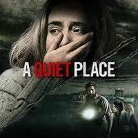 Ducks After Dark - A Quiet Place