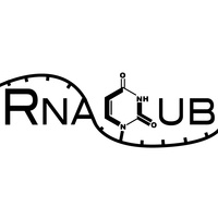 RNA Club: Meet at CU Anschutz