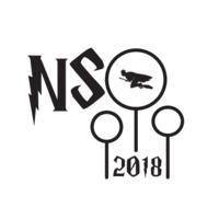 NSO Goodbye Lunch