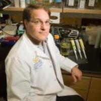 USC Stem Cell Seminar: Jack Parent, University of Michigan