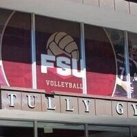 Volleyball vs. VCU
