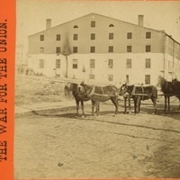 Animal Science and the American Civil War