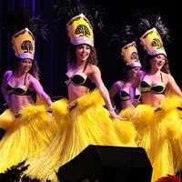 Performing Arts Series - Polynesian Paradise Dancers