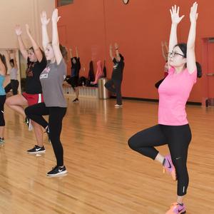 Free Falcon Fitness Classes