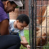 Free Petting Zoo At Derwood Farmers Market Finale Visit