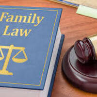 Schiller DuCanto & Fleck Family Law Center's Lunch & Learn Series:  How to Establish a Parentage Case