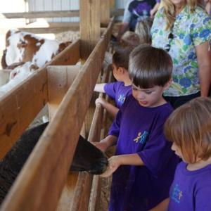 Fall Festival at Richlands Dairy Farm