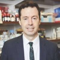 Tumor Immune Landscapes and Immune Competent Organoids