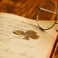 Insight Seminars: Bob Dylan's Poetry