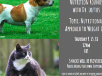 Veterinary Nutrition Rounds: Nutritional Approaches to Weight Loss