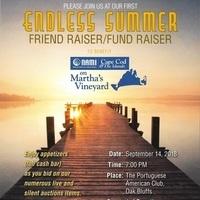 Endless Summer Friend Raiser/Fund Raiser