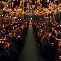 Muggles Opening Feast