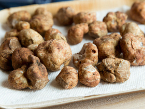 Newberg Fresh Truffle Marketplace