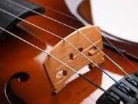 Musicale: Performance Plus Series - Ginastera String Quartet