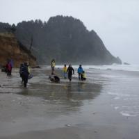 Storm Watchers Beach Hike