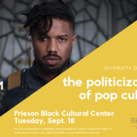 Diversity Dialogues: The Politicization of Pop Culture