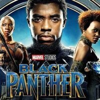 Gray Fund Movie: Black Panther