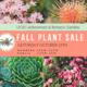 Fall Plant Sale at UCSC Arboretum & Botanic Garden