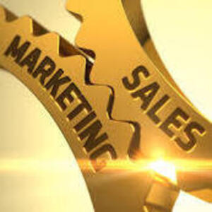 """""""Fall into Sales and Marketing: an interactive discussion with alumni"""""""