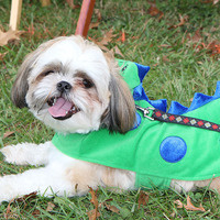 Howl-O-Ween Pooch Parade and Pet Expo