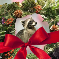 Holiday Craft Fair at Placerita Canyon Nature Center