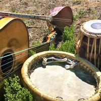 UCSC World Music Ensembles