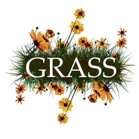 Group Recycling And Sustainable Solutions (GRASS) Relaunch!
