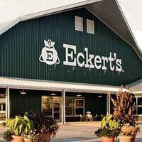 Apple-Picking at Eckert's Farm