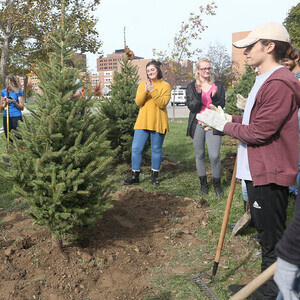 Tree Planting Service Project
