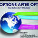 Options After OPT