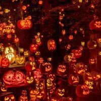 """""""see boo!"""" Pumpkin Carving & More!"""