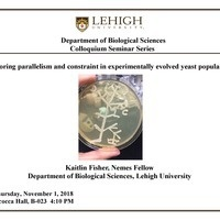Colloquium Seminar Series: Kaitlin Fisher, Nemes Fellow, Biological Sciences Department, Lehigh University |Biological Sciences