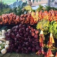 Davis Farmers Market Winter Market