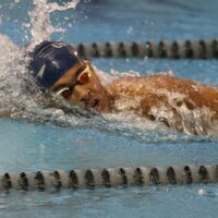 Men's Swimming at  Wingate University