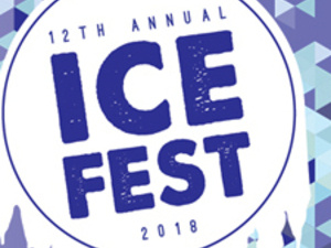 12th Annual Ice Fest in Downtown Ithaca