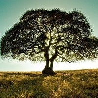 Spring course: Landscape & Restoration Ecology