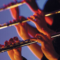 Birmingham Youth Wind Symphony Concert