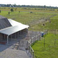 National Alpaca Farm Day Open House