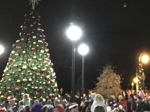 Lilburn Tree Lighting