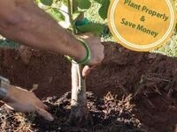 Professional Tree Keepers Course