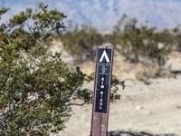 Kim Nichol Trail Hike
