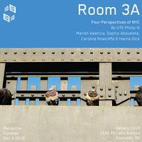 Room 3A: Four Perspectives of NYC at Gallery 1010